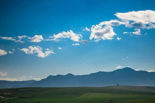 pasture-503025_960_720