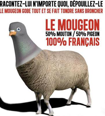 le_mougeon
