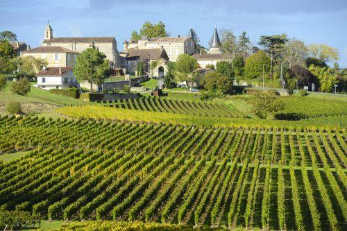 1128819_lirreductible-vin-francais-qui-resiste-encore-et-toujours-a-la-mondialisation-134014-1