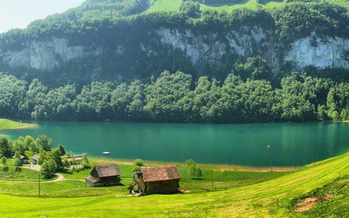 thumb2-switzerland-the-lake-mountain-pasture