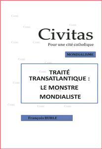 I-Moyenne-21214-traite-transatlantique-le-monstre-mondialiste.net