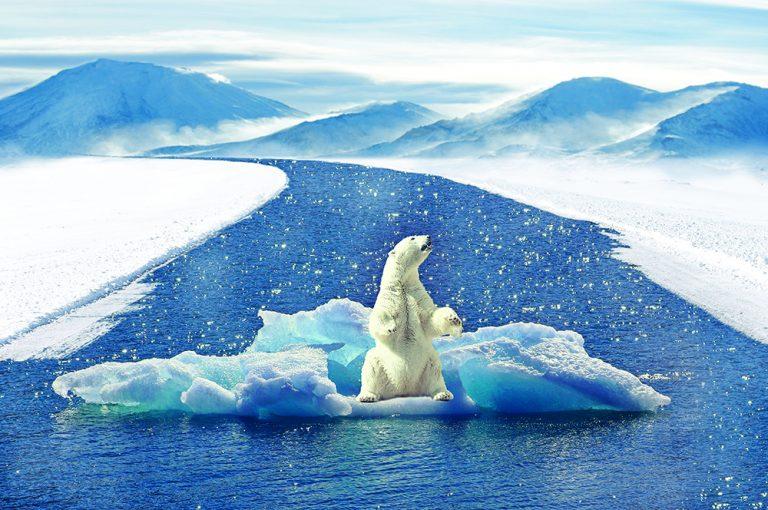 La farce du réchauffement climatique : une imposture au service du mondialisme (2e partie)